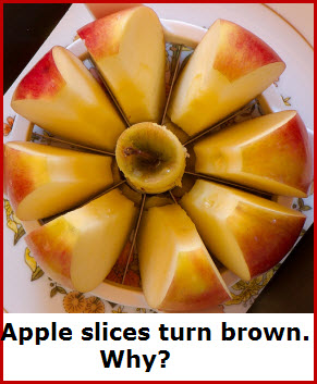 appled-sliced-from-theiir