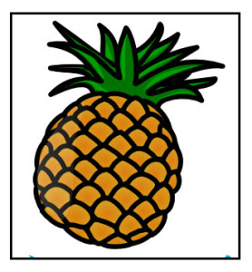 Pineapple contains an enzyme that digests protein.