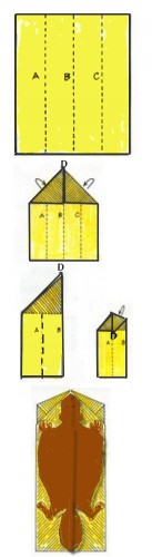 Steps for making a paper airplane, which is used to model the glidiing of a flying squirrel.