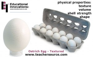 Ostrich Eggs from Education Innovations. Great for Physical Properties Investigations.