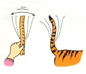 talking-tiger-tail1