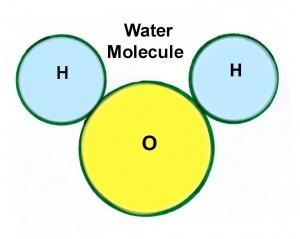 water-mickeymouse