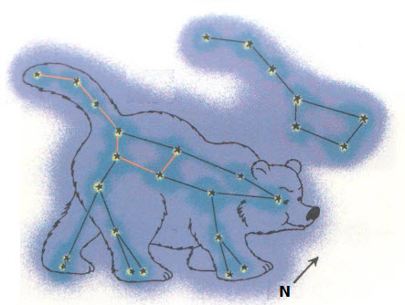 Ursa Major commonly called Big Bear contains the asterism, The Big Dipper.