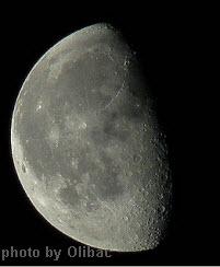 moon-terminator-2