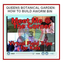 worm-bin-mmatc