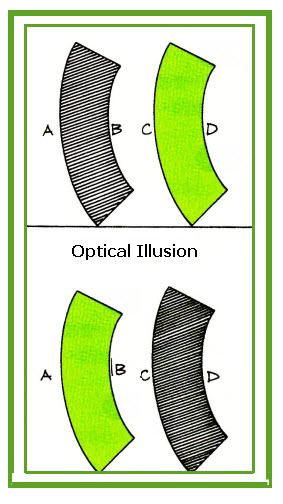 vision-optical-illusion12