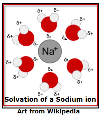 Solvation of Sodium Ion