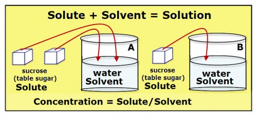 Each solution is a mixture of sugar (sucrose) and water. Sugar is the solute and water the solvent. Solution A has twice as much sugar added to the same amount of water as does solution B. Thus, Solution A is more concentrated than is Solution B. You can also say that of the two solutions, A and B, Solution B is