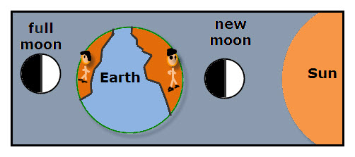 moon-Phases-full-vs-new.jpg (502×223) | Witchy or Spellin Stuff | Pin ...