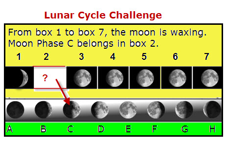 Luna cycle coupon code