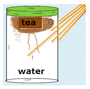 Solar tea is no different from any other tea except solar energy is used to heat the water.