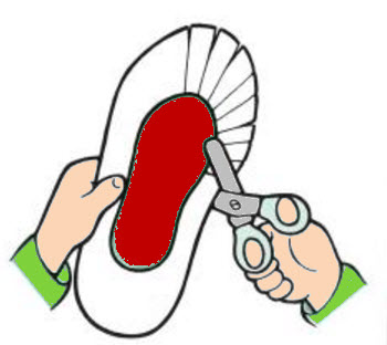Diagram of scissors cutting slits in shape to model cilia on a paramecium.