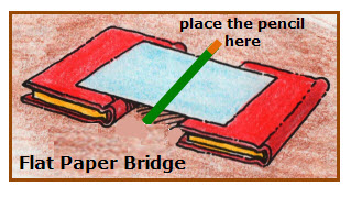 Paper Bridge Testing