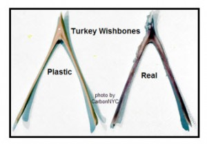 Real and Fake Turkey Wishbones