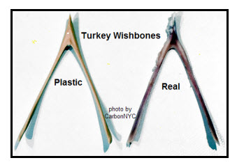 Fake and Reak Wishbones