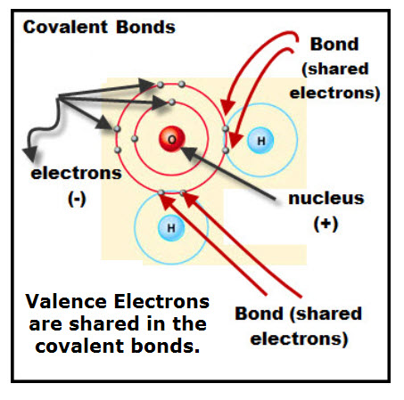 Water's Covalent Bonds