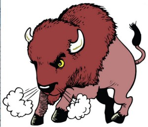 This drawing of a snorting, mean, mad buffalo is used to let readers know that buffaloes are not tame.