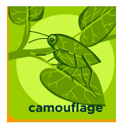 An animal's camoflauge characteristics include its body's color, pattern design, and shape The structure, color, and pattern of