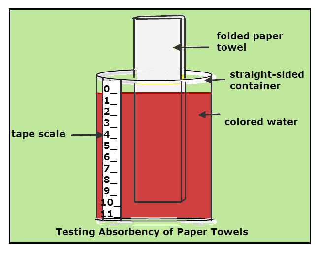 Science Project: Paper Towel Water Absorbency Rate | VanCleave's ...