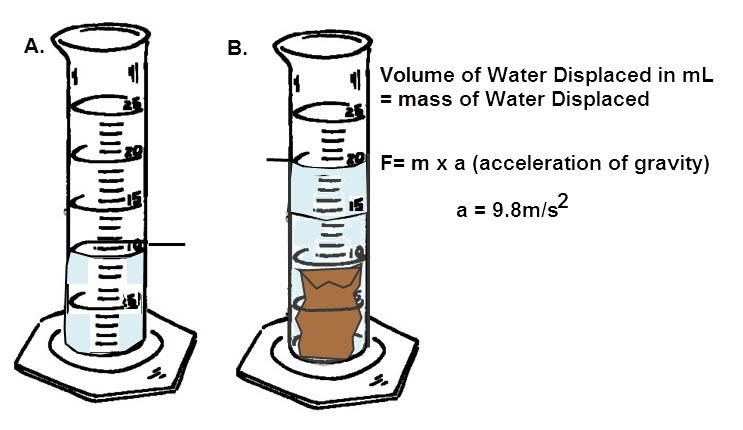 Measuring Buoyancy Force